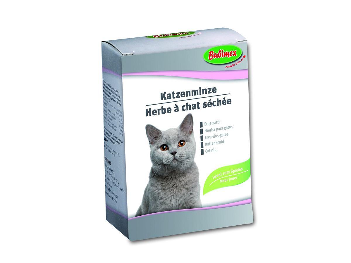Bubimex Katzenminze